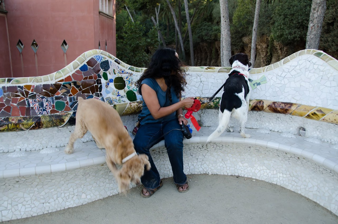 Chewy and Abby at Parc Guell
