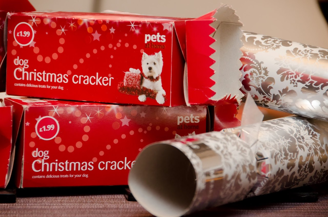Doggie Christmas Crackers