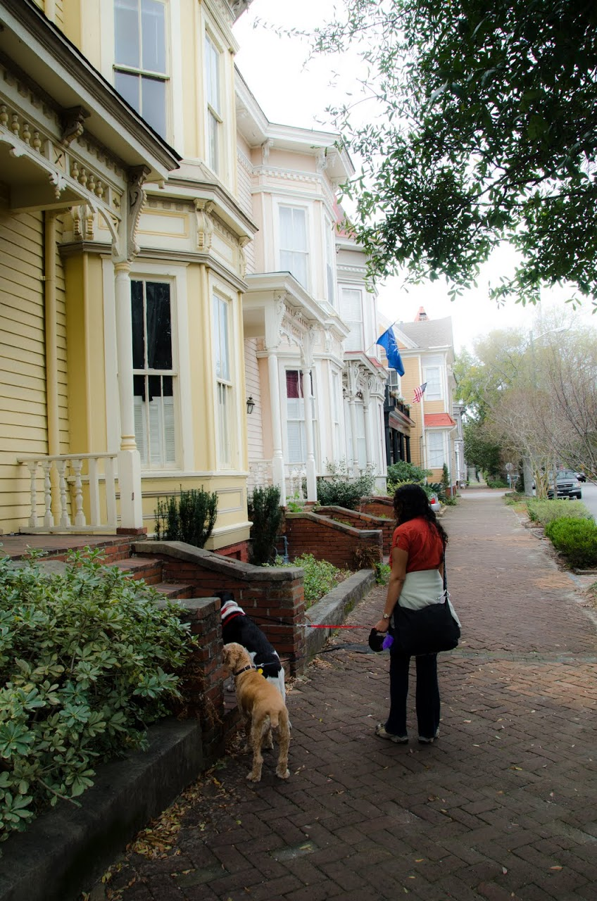 Walking in Savannah