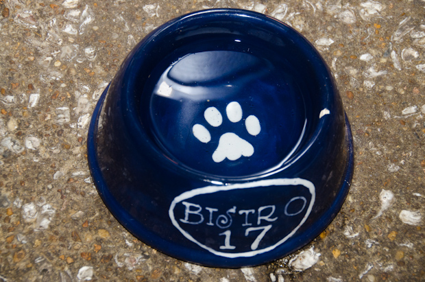 Bistro 17 water bowl