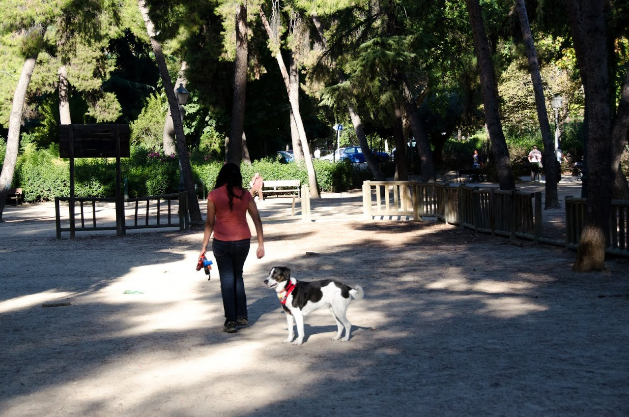 Pet area at Calero Park